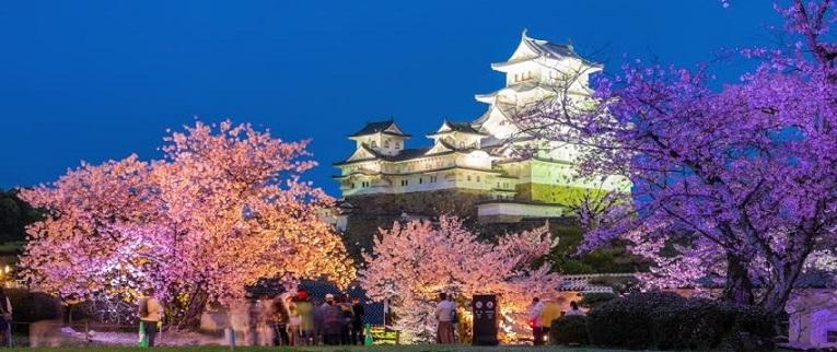 Japonya Kiraz Çiçekleri Festivali